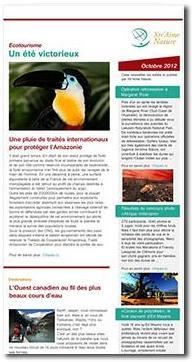 Une newsletter au design sur mesure